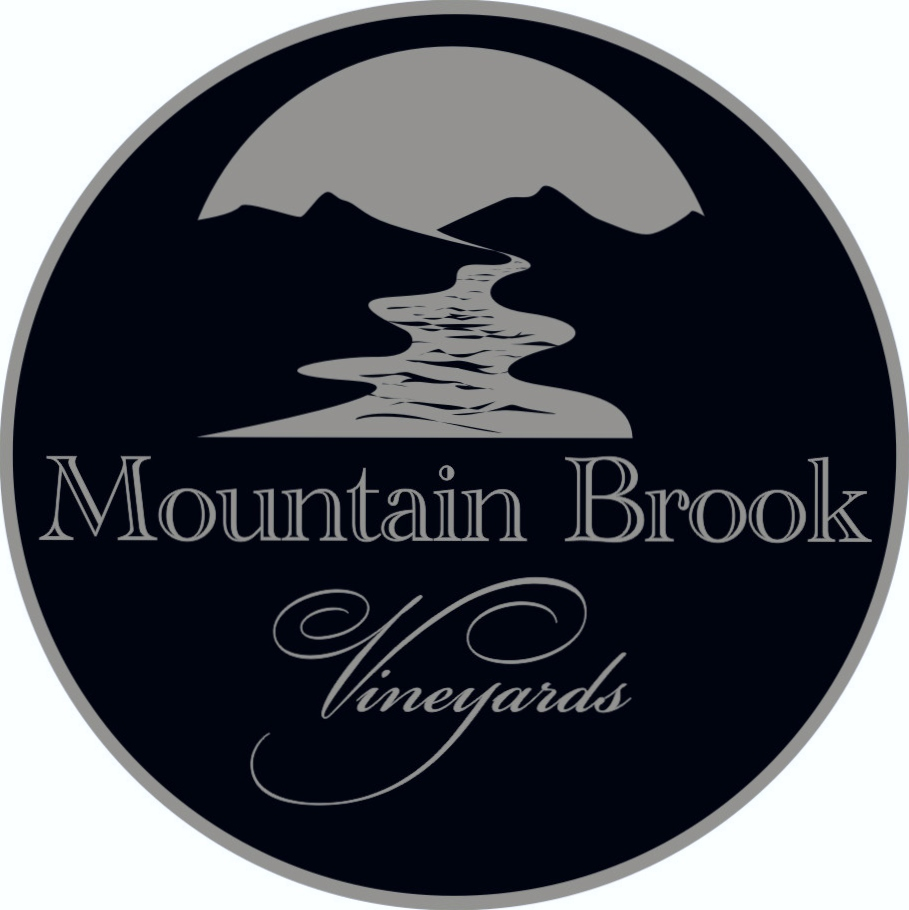MBV Logo Picture 001